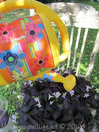 Mod Podge Watering Can