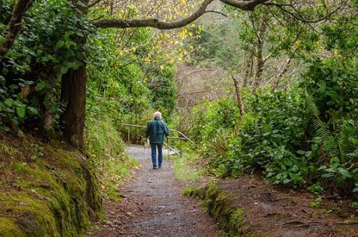 hiking Cape Arago (4 of 37)