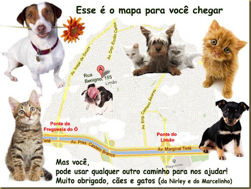 mapa_benigno