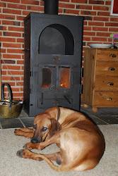 Mandie 1 yr in front of fire.JPG