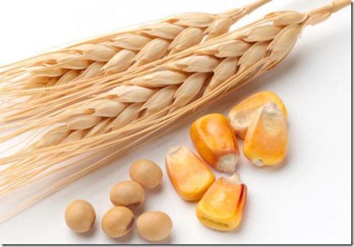 Corn-Wheat-SoyBeans