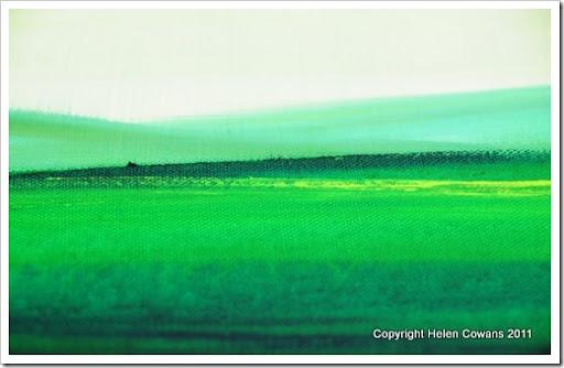Spring Moor I close1