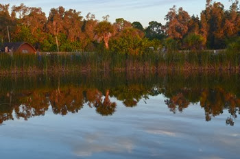fishing pond at the KOA on Big Pine Island