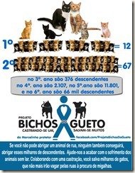 projeto-bichos-do-gueto-02