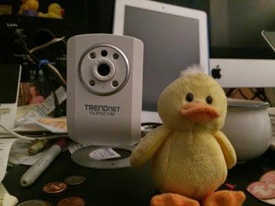 Original Duck picture
