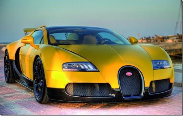 Bugatti-Veyron-Grand-Sport-13[2]
