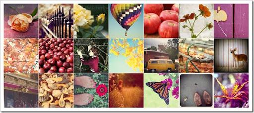 FPOE Autumn Mosaic ORIG