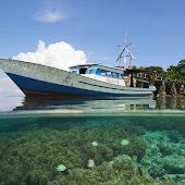 Paket Tour Bunaken