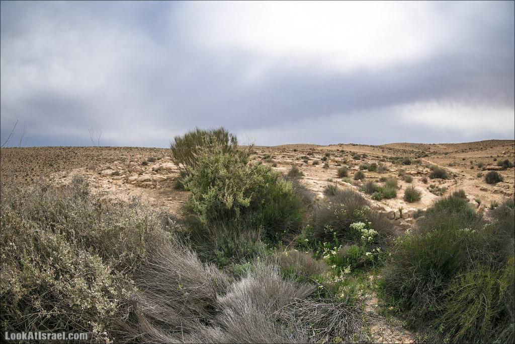 Водоёмы (колодцы) Луц | Lutz cisterns | בורות לוץ | LookAtIsrael.com - Фото путешествия по Израилю