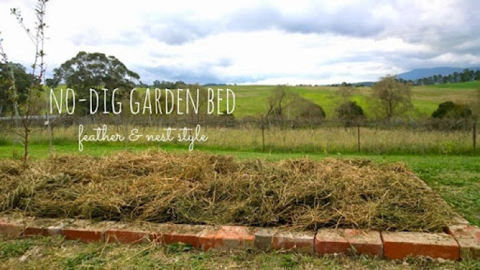 no dig garden bed feather and nest style  2014 (14)