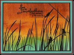 birds on reeds