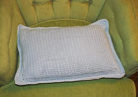 glass, pillow, hydrangeas 015-2