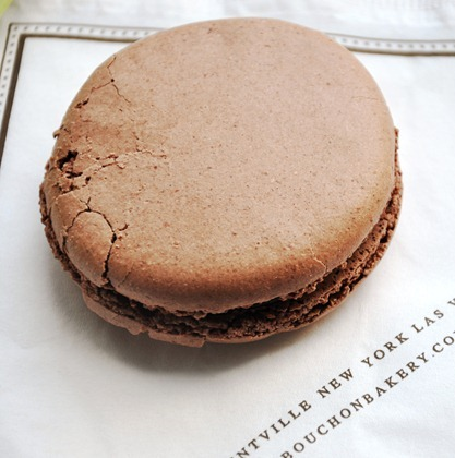 chococupcakes 210