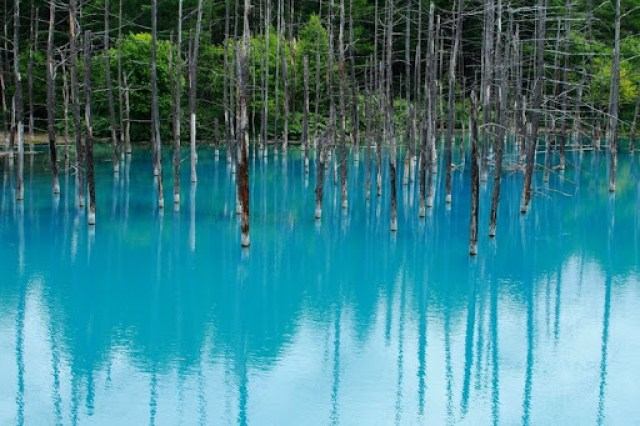 Image result for Blue Pond of Hokkaido