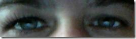 eyelureeyelashes.jpg