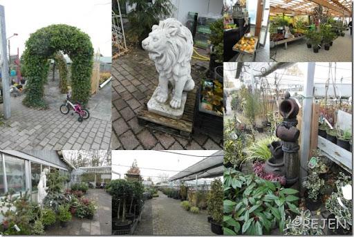 Birkerød Planteskole 3-11-2012