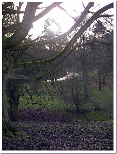 Durham-20121230-00137