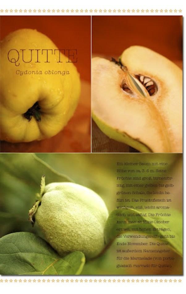 Qutten_1
