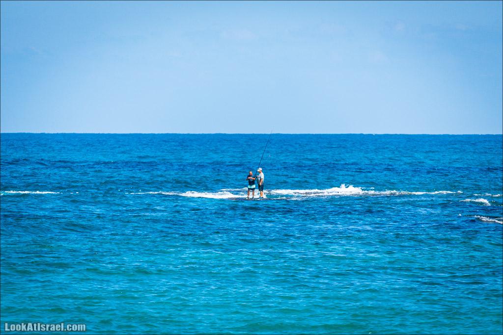 Кейсария   Caesarea   קיסריה    LookAtIsrael.com - Фото путешествия по Израилю
