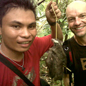 Discovery Sulawesi