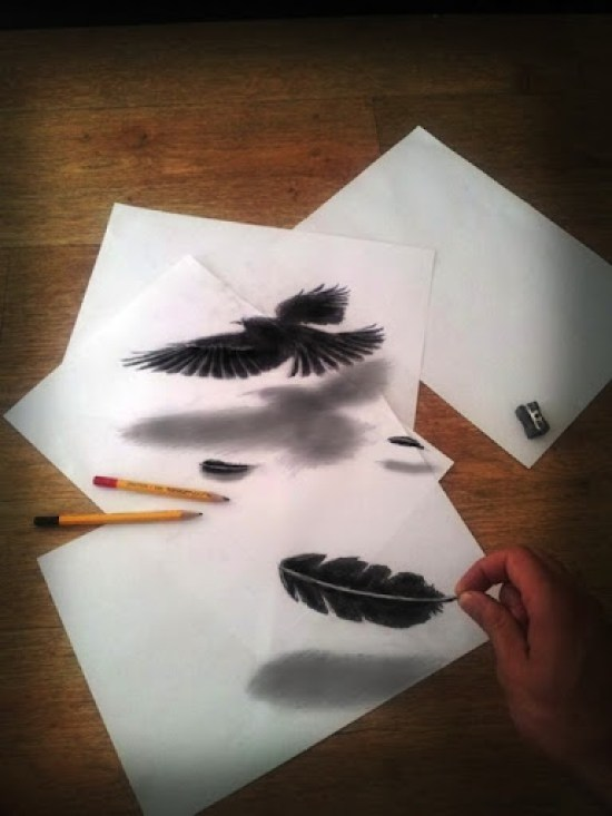 dibujo anamórfico pluma de pájaro