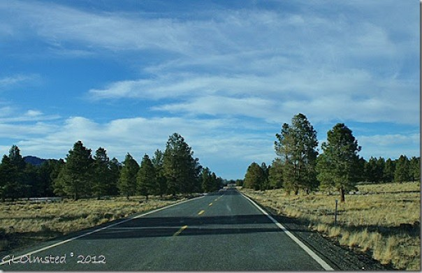 06 Meadows & pines SR180 W AZ (1024x661)