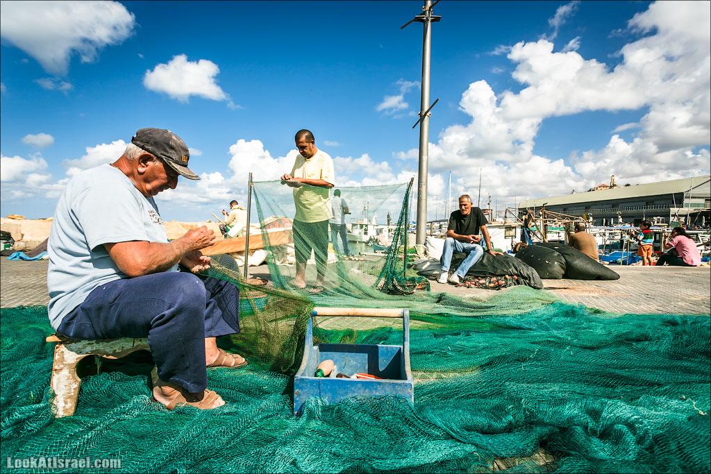 Такие разные яффские рыбаки