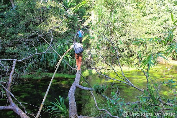 camboya-tekking-jungla-chi-phat-ecoturismo-unaideaunviaje.com-31.jpg