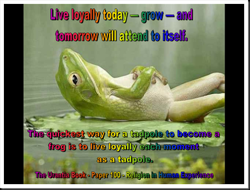 From Tadpole to Frog...