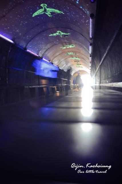 【旗津海岸線&旗津星空隧道。高雄必遊】傳說中的星空隧道,賞夕陽! - Livia's Wonderland薇笑樂園