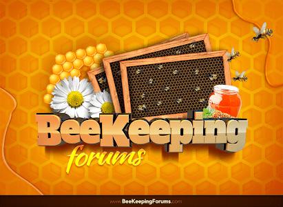 Beekeeping Forum screenshot 1