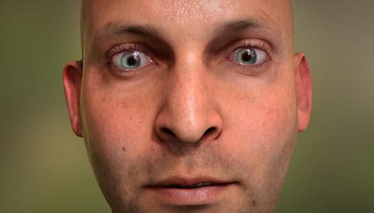 NVIDIA Tegra FaceWorks Demo screenshot 5
