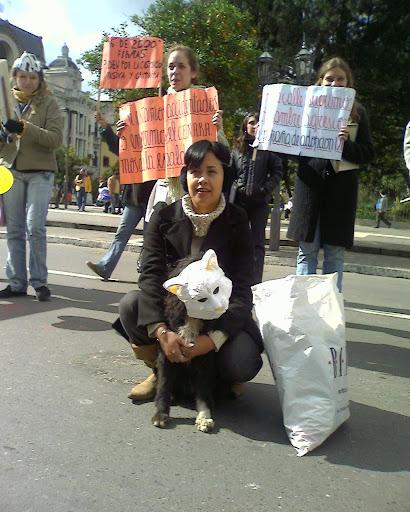 Manifestante rescatando a un perrito de la calle y convirtiéndolo en uno de los activistas por los Derechos del Animal