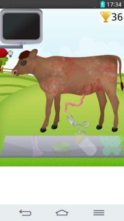 cow pregnancy games APK