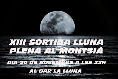 Cartell Lluna Plena 2010