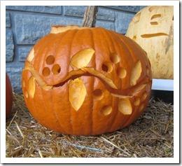 vine pumpkin