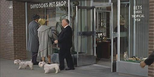 Il cameo di Hitchcock ne 'Gli uccelli' (1963)