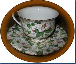 magnollia cup