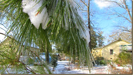 snow and ice_031