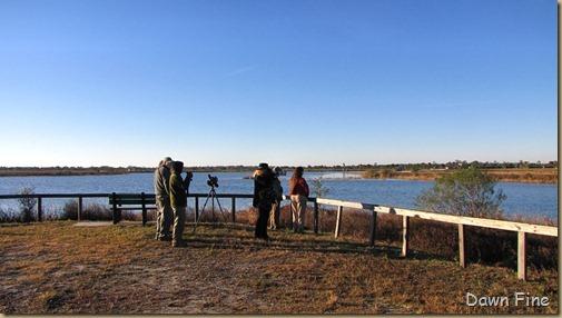 Viera wetlands_050