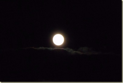 Full moon from Marble View Forest Road 219 Kaibab National Forest Arizona