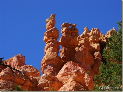 Hoodoos above Navajo Loop trail Bryce Canyon National Park Utah