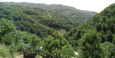 Brda iznad Predejana