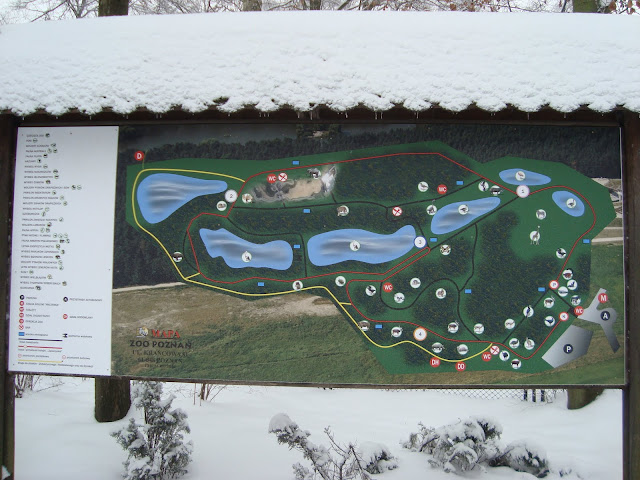 Nowa mapa zoo