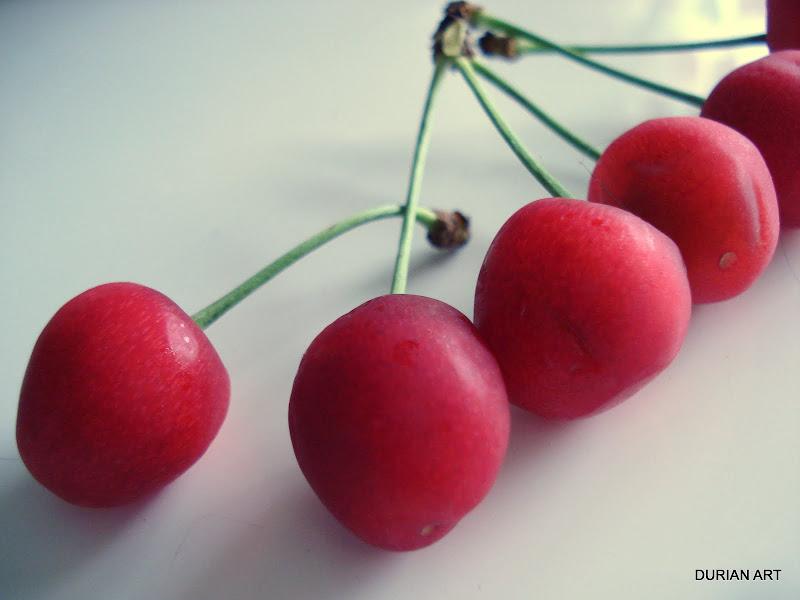 Cerises aigres - Cerises au vinaigre (sour cherry, pickled cherry)