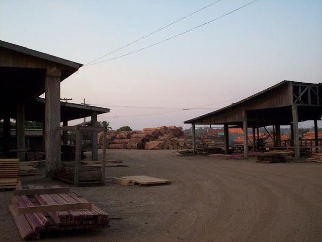 Viver em Rondônia 1 - madeira (1/3)