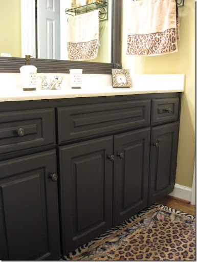 Attirant Painting Laminate Cabinets