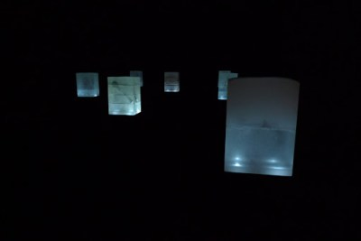 Specimens in glass