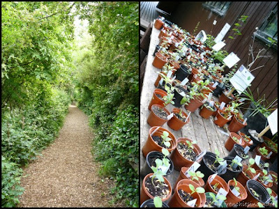 Sortir à Londres : Parcs et espaces verts 2