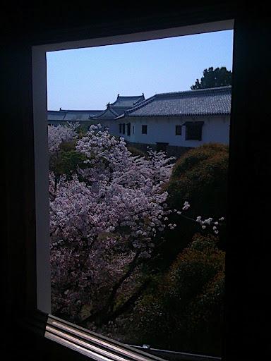 Hanami Within Himeji